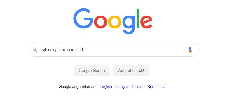 Google Indexierung - Suche